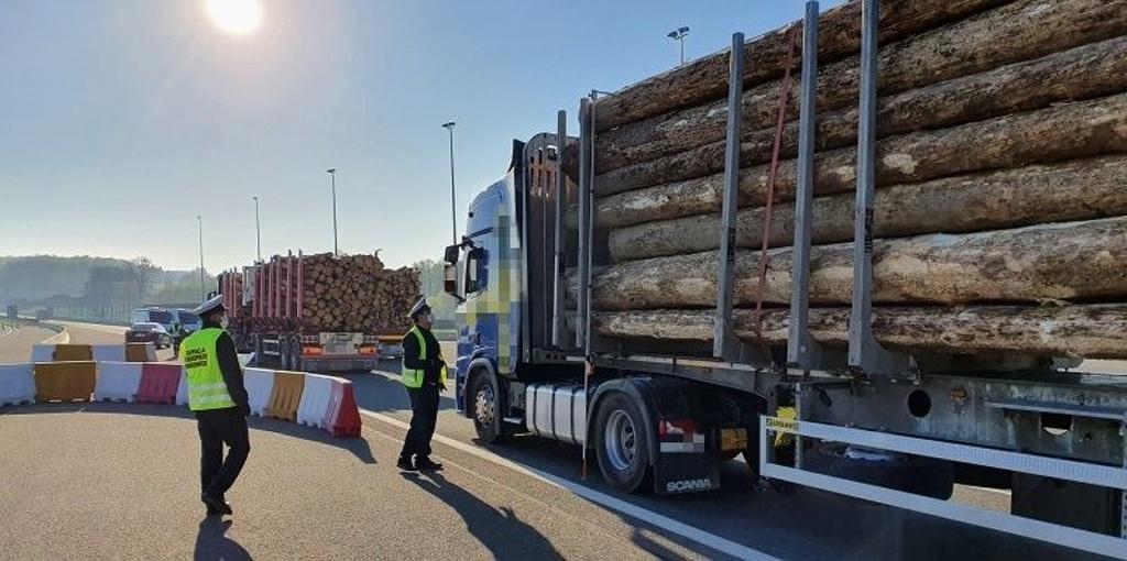 Prawo: Transporty drewna prosto z lasu na wagę, Magazyn Ciężarówki