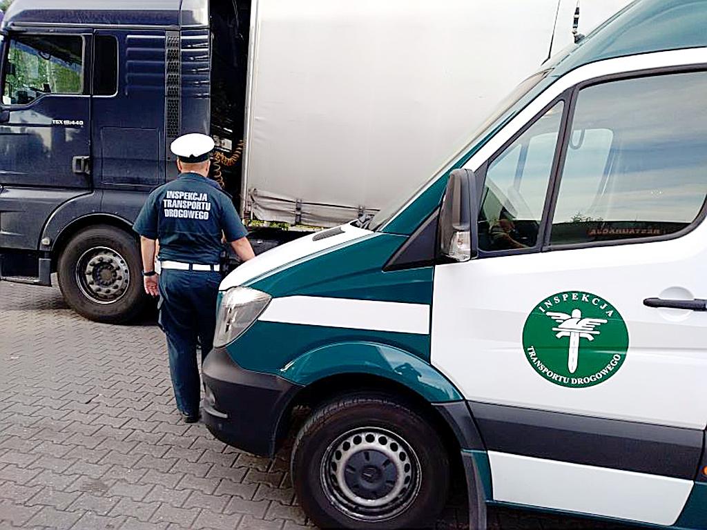 PRAWO: To miała być skrytka nie do wykrycia. Magnes schował w dziupli drzewie, Truckslog.pl
